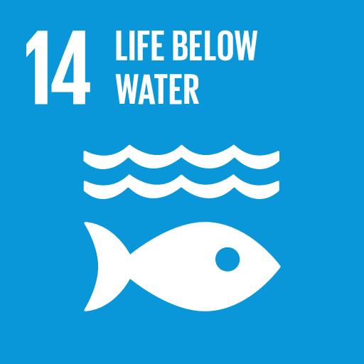 Verdensmål 14 - Livet under havet